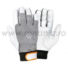 Mănuși de protecție împotriva frigului cat. II, COLDTEXT